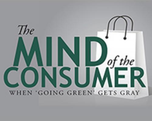 Mind of the Consumer image