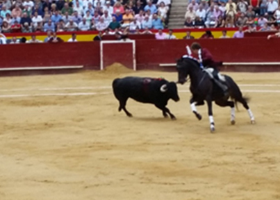 Blog 18_2 , I decided to go see a bullfight image